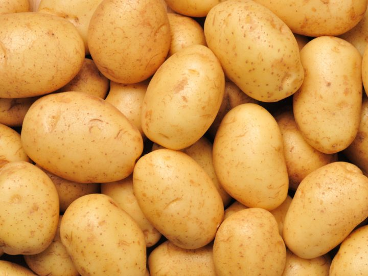 Bumper potato production likely in northern region